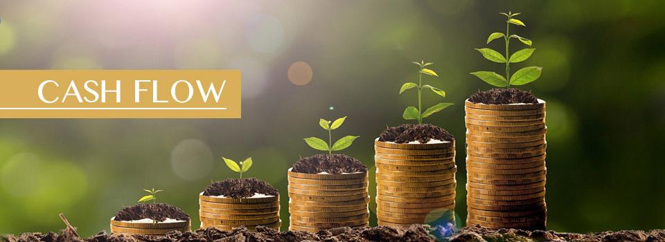 Cash Flow - Rental Income