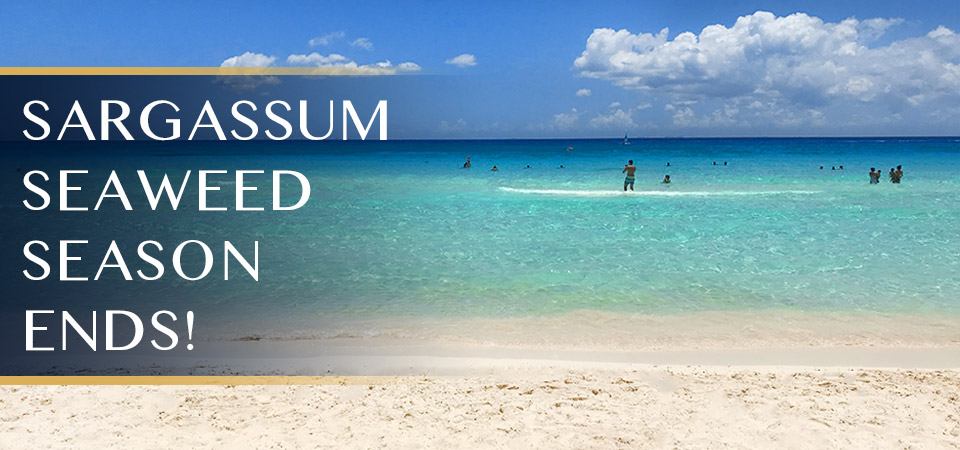 Sargassum Seaweed Season Ends in Tulum and the Mexican Caribbean