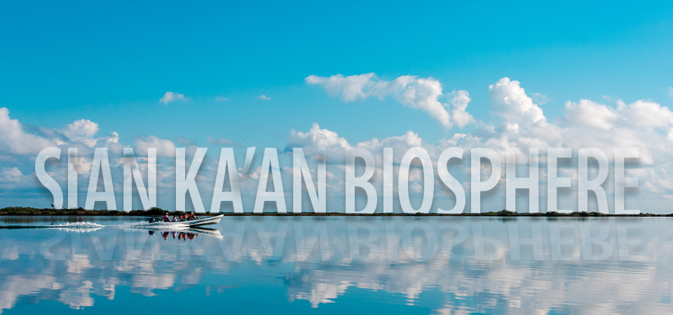 Enjoy a Sian Ka'an Biosphere Reserve Day Trip from Tulum, Mexico