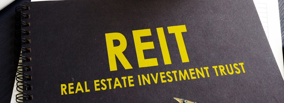 How do beginners invest in real estate? | Purchase REITs
