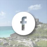 Stay Social Facebook